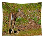 2 Points Tapestry