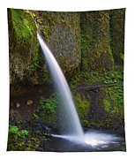 Ponytail Falls - Columbia River Gorge - Oregon Tapestry