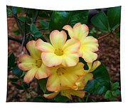 Rhododendron 'toff' Tapestry