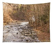 Running Water Tapestry