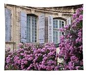 Saint Remy Windows Tapestry