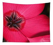 Scarlet Flax Tapestry