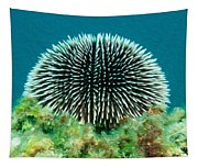 Sea Urchin Tapestry