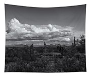 Sonoran Desert In Black And White  Tapestry