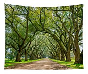 Southern Journey  Tapestry