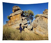 Split Rocks With Woman Tapestry