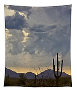 The Beauty Of The Desert  Tapestry