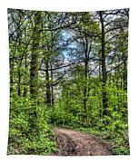 The Forest Path Tapestry