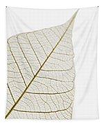 Transparent Leaf Tapestry