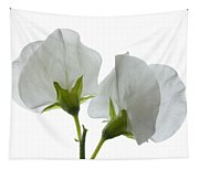 Two White Sweet Peas 2 Tapestry