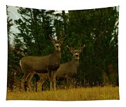 Two Young Bucks Tapestry