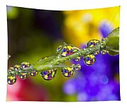 Water Drops On A Flower Stem Tapestry