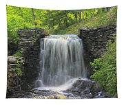 Water Fall Moore State Park Tapestry