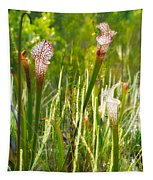 White-topped Pitcher Plant Tapestry