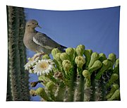 White-winged Dove Atop A Saguaro Tapestry