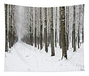 Winter Alley Tapestry
