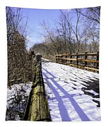 Winter On Macomb Orchard Trail Tapestry