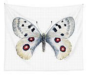 28 Apollo Butterfly Tapestry