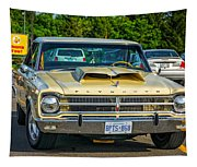 1965 Plymouth Satellite Tapestry