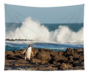 Adult Nz Yellow-eyed Penguin Or Hoiho On Shore Tapestry