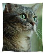 American Shorthair Cat Profile Tapestry
