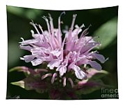 Bee Balm From The Panorama Mix Tapestry
