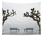 Benches And Trees Tapestry