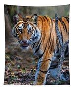 Bengal Tiger Panthera Tigris Tigris Tapestry