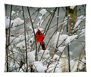 Cardinal In Winter Tapestry