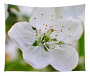 Cherry Flowers Tapestry