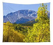 Crystal Creek Autumn Tapestry