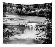 Cumberland Falls Tapestry