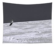 First Run Tapestry