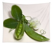 Green Peas In Pod With White Flower Tapestry