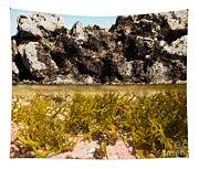 Over-under Split Shot Of Clear Water In Tidal Pool Tapestry