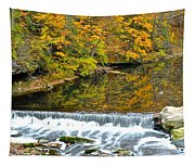 Panoramic Beauty Tapestry