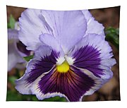 Pansy From The Chalon Supreme Primed Mix Tapestry