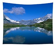 Reflection Of Mountains In Water Tapestry