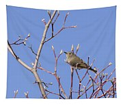 Ruby-crowned Kinglet Tapestry