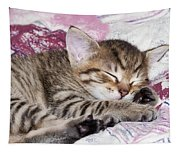 Sleeping Kitten Tapestry
