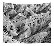 Tabernas Desert Tapestry