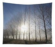 Trees On A Foggy Field Tapestry