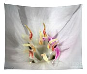White Godetia From The Satin Mix Tapestry