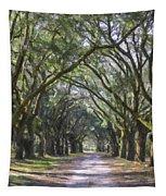 Allee Of Oaks Road Tapestry