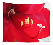 Amaryllis Named Black Pearl Tapestry
