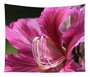 Bauhinia Blakeana - Hong Kong Orchid - Hawaiian Orchid Tree  Tapestry