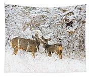 Doe Mule Deer In Snow Tapestry