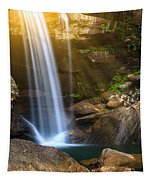 Eagle Falls Tapestry