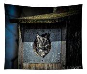 Eastern Screech Owl  Tapestry