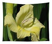 Gladiolus Named Nova Lux Tapestry